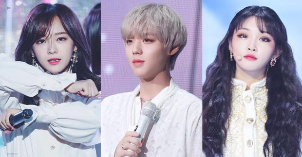 Hội idol đi ra từ Produce: Người là nữ hoàng solo toàn tài hiếm có, người cân trọn từ diễn xuất tới ca hát, bán album khiến tiền bối xanh mặt - Ảnh 1.