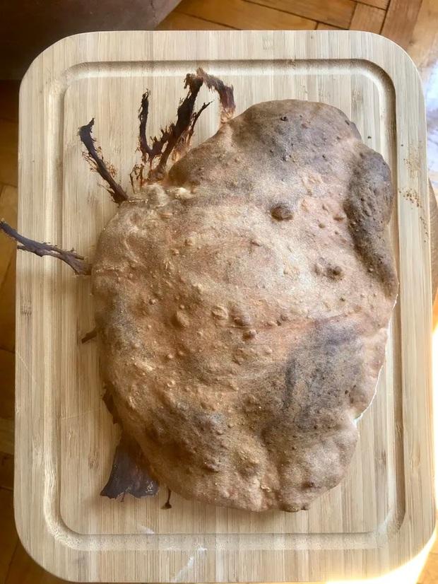 Ở nước ngoài cũng có hội ghét bếp và đây là những tác phẩm ấn tượng nhất mùa cách ly - Ảnh 1.