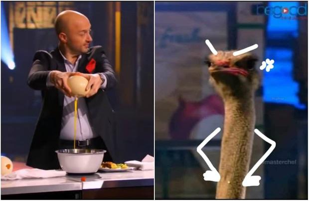 """Giám khảo MasterChef bị dân mạng đào lại clip đập trứng đà điểu ngay trước mặt loài động vật này, màn đùa vui bị nhiều người cho rằng """"lố bịch"""" - Ảnh 4."""