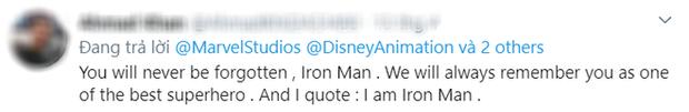 MXH khóc hết nước mắt với chi tiết ẩn trong ENDGAME: Trái tim toàn đội dành cho Iron Man sâu sắc gấp ngàn lần lời yêu 3000 - Ảnh 7.