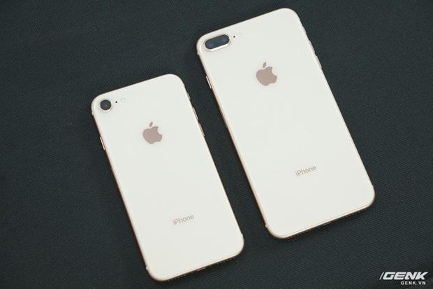 Buồn cho iPhone 8 và iPhone 8 Plus: Ngay lập tức bị cho xuống mồ sau khi iPhone SE mới ra mắt - Ảnh 1.