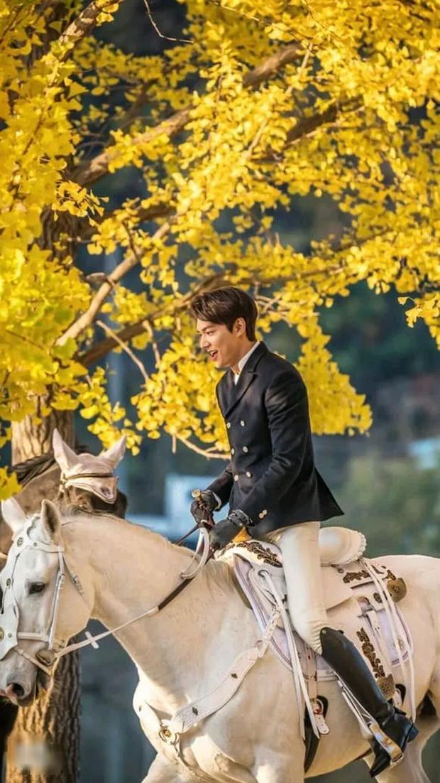 Điều khó hiểu nhất ở hai tập mở màn Quân Vương Bất Diệt là điệu bộ nhún ngựa của Lee Min Ho? - Ảnh 10.