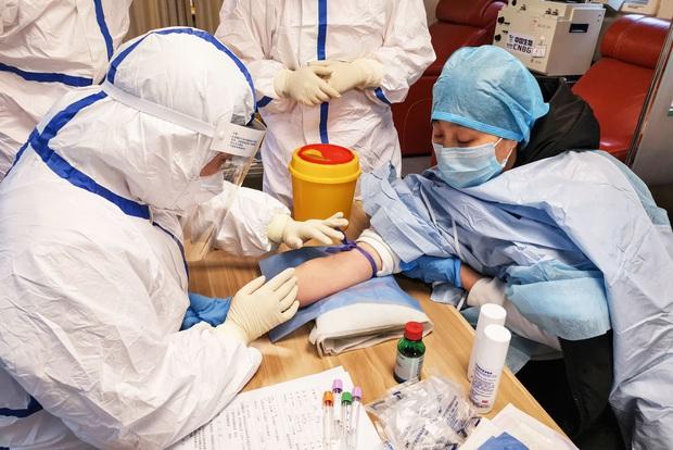 Lý giải việc 163 bệnh nhân Hàn Quốc vừa phục hồi lại dương tính với virus corona: Liệu chúng ta có thể bị tái nhiễm Covid-19? - Ảnh 5.