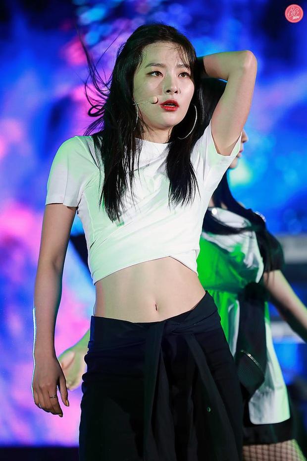 """Loạt ảnh """"gây lú"""" cả fandom: Fan ruột cũng khó phân biệt đây là Irene hay Seulgi, lộ diện idol giống nữ thần nhà SM? - Ảnh 8."""