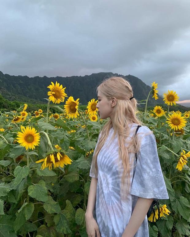 Tóc dài thướt tha sợ làm gì cũng sến, bạn phải học ngay 3 cách buộc tóc sang và xinh hết ý của Rosé - Ảnh 5.