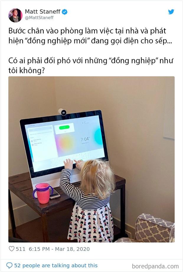 Những chuyện giời ơi đất hỡi của cư dân mạng thế giới khi làm việc online tại nhà trong mùa dịch COVID-19 - Ảnh 10.