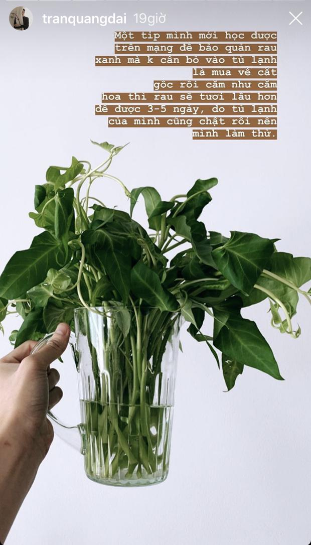 Quang Đại share mẹo bảo quản rau xanh vừa học được trên mạng: test thử thấy rau tươi lâu hơn mà lại còn để được từ 3 - 5 ngày - Ảnh 3.