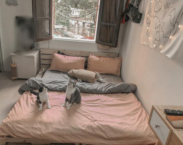 Gái xinh biến phòng trọ dột nát, tường mốc bong tróc thành nơi chill hết nấc: Sáng dậy thấy nhà như homestay thì hạnh phúc lắm! - Ảnh 3.