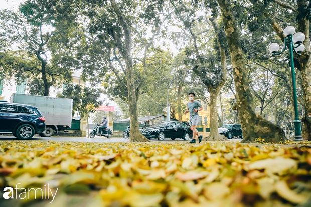 Cuối tháng 4, con phố lãng mạn nhất Hà Nội đón mùa sấu thay lá vàng rực khắp con đường - Ảnh 8.