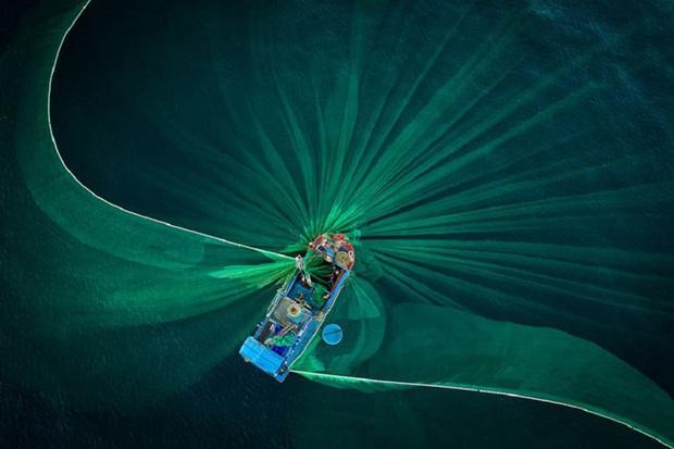 Vượt qua 36.000 tác phẩm, bức ảnh chụp xe bán cá cảnh rong ở Việt Nam chiến thắng giải thưởng nhiếp ảnh lớn ở Mỹ - Ảnh 10.