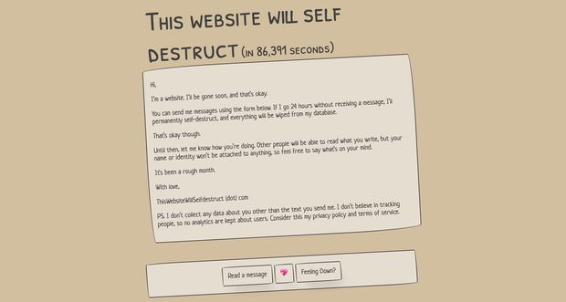 Website này cũng biết chảnh chọe không kém crush của bạn: Seen mà không rep là... tự hủy luôn! - Ảnh 1.