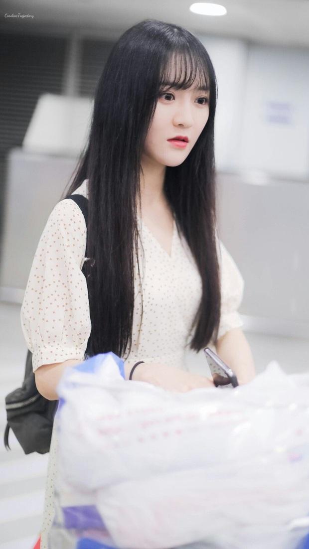 Fan chơi khô máu đưa idol debut: Lưu Vũ Hân nhận tới 17 tỷ đồng tiền quyên góp, bỏ xa Thánh lố phát cuồng vì Lisa - Ảnh 10.