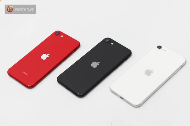 iPhone SE 2020: Cấu hình cao, giá vừa tầm nhưng chưa phải là món hời cho game thủ mobile - Ảnh 1.