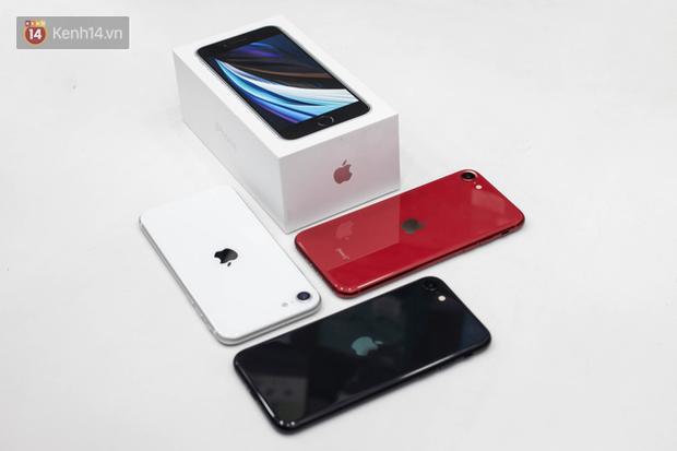 iPhone SE 2020: Cấu hình cao, giá vừa tầm nhưng chưa phải là món hời cho game thủ mobile - Ảnh 2.
