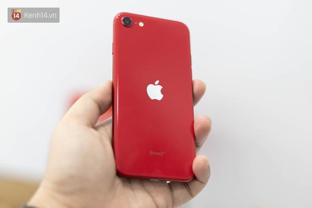 iPhone SE 2020: Cấu hình cao, giá vừa tầm nhưng chưa phải là món hời cho game thủ mobile - Ảnh 3.