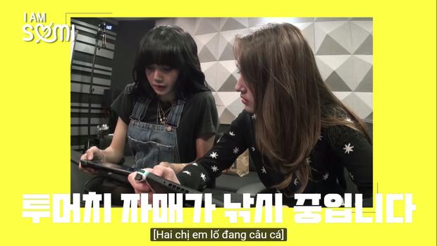 Hóa ra bông hồng lai Somi cũng là 1 fan của cô giáo khó tính Lisa tại Thanh xuân có bạn! - Ảnh 3.