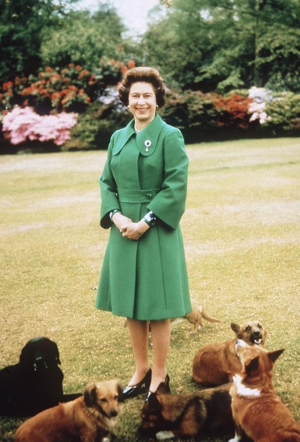 Bí mật váy áo của Nữ hoàng Anh suốt 100 năm vừa mới được tiết lộ: Không phải các nguyên tắc mà ở chi tiết nhỏ xíu 1 bên vai - Ảnh 4.