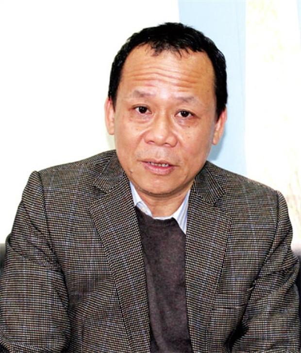 """Viện Ngôn ngữ học Việt Nam từ chối thẩm định """"công trình chữ VN song song 4.0"""" - Ảnh 2."""