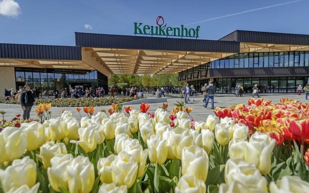 Vườn hoa đẹp nhất thế giới đóng cửa sau 71 năm, nhiếp ảnh gia tò mò muốn vào bên trong thì choáng ngợp với cảnh tượng trước mắt Photo-1-1588249765434372363542