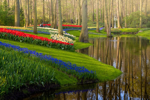 Vườn hoa đẹp nhất thế giới đóng cửa sau 71 năm, nhiếp ảnh gia tò mò muốn vào bên trong thì choáng ngợp với cảnh tượng trước mắt - Ảnh 11.