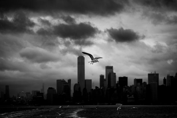 Chùm ảnh đẹp nhưng buồn đến lặng người: Thành phố New York nhộn nhịp bỗng hóa ảm đạm trong những ngày Covid-19 bao trùm - Ảnh 21.