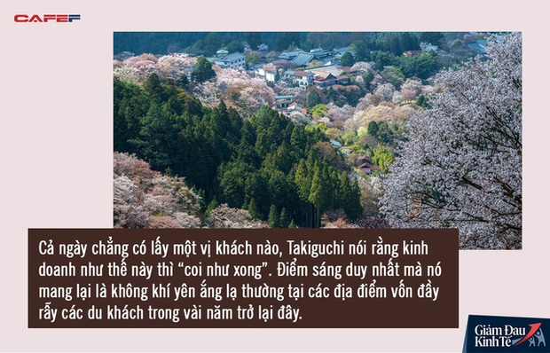 Mùa hoa anh đào buồn vì vắng khách du lịch tại Nhật Bản: Người kinh doanh méo mặt thế này coi như xong, cư dân thích thú trước sự bình yên hiếm có - Ảnh 4.
