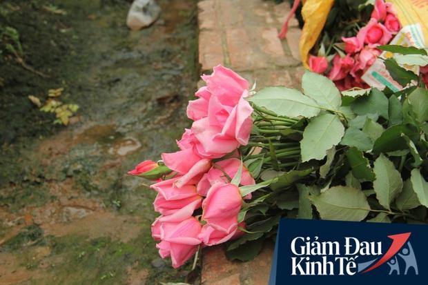 """""""Thủ phủ"""" hoa tại Hà Nội nở rộ giữa dịch COVID-19: Tưởng thắng vụ mà thành bại, hoa cười nhưng người khóc - Ảnh 10."""