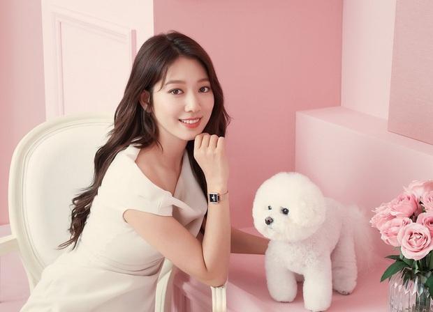 Lâu lắm rồi nàng thơ của Lee Min Ho Park Shin Hye mới gây bão MXH thế này: Tươi trẻ mơn mởn, ai ngờ đã 30 tuổi? - Ảnh 9.