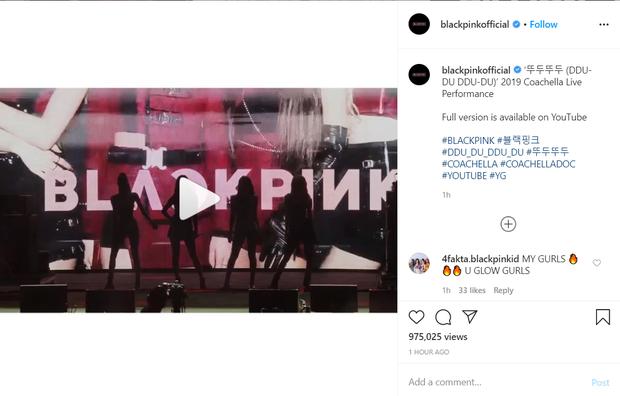 Quá vã BLACKPINK comeback, fan cày luôn màn trình diễn DDU-DU DDU-DU tại Coachella 2019 lên thẳng... #2 trending thế giới - Ảnh 1.