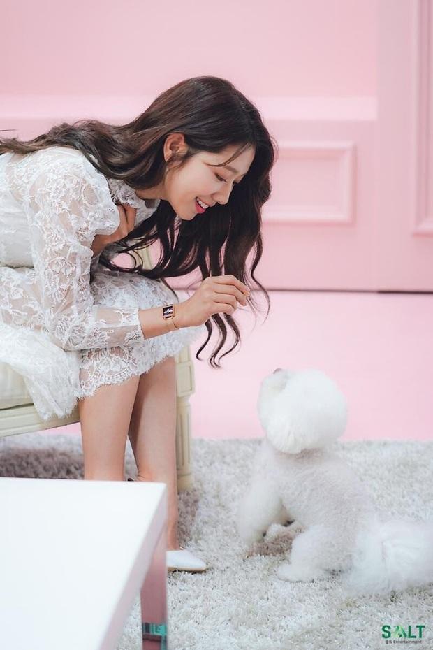 Lâu lắm rồi nàng thơ của Lee Min Ho Park Shin Hye mới gây bão MXH thế này: Tươi trẻ mơn mởn, ai ngờ đã 30 tuổi? - Ảnh 8.