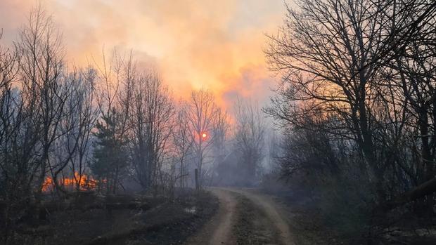 Chernobyl cháy lớn, mức phóng xạ trong khu vực cao gấp 16 lần mức bình thường - Ảnh 1.