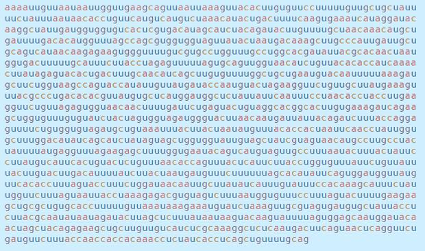 Chi tiết bộ gen SARS-CoV-2: Những tên khủng bố chiếm dụng tế bào phổi người - Ảnh 12.