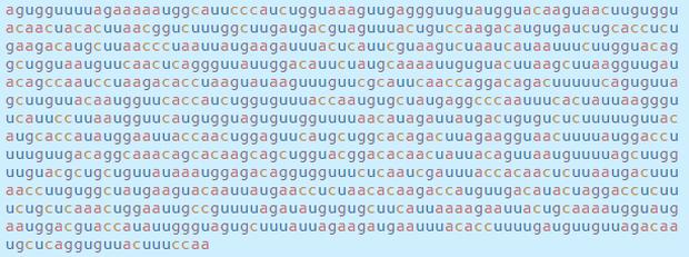Chi tiết bộ gen SARS-CoV-2: Những tên khủng bố chiếm dụng tế bào phổi người - Ảnh 14.