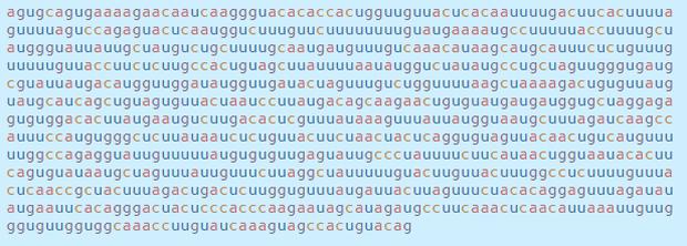 Chi tiết bộ gen SARS-CoV-2: Những tên khủng bố chiếm dụng tế bào phổi người - Ảnh 16.