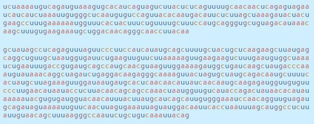 Chi tiết bộ gen SARS-CoV-2: Những tên khủng bố chiếm dụng tế bào phổi người - Ảnh 19.