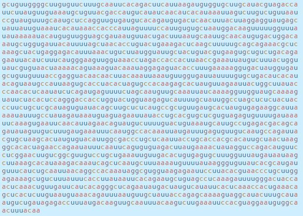 Chi tiết bộ gen SARS-CoV-2: Những tên khủng bố chiếm dụng tế bào phổi người - Ảnh 28.