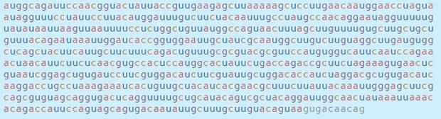 Chi tiết bộ gen SARS-CoV-2: Những tên khủng bố chiếm dụng tế bào phổi người - Ảnh 44.
