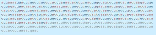 Chi tiết bộ gen SARS-CoV-2: Những tên khủng bố chiếm dụng tế bào phổi người - Ảnh 48.