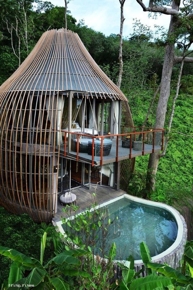 Khu du lịch mới toanh ở Việt Nam đang thu hút chục nghìn share vì kiến trúc hình tổ chim độc đáo, nhưng thực hư là như thế nào? - Ảnh 7.