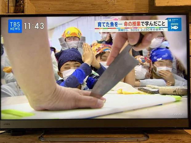 Lớp học ở Nhật gây phẫn nộ vì bắt học sinh giết mổ và ăn thịt con vật do chính tay mình nuôi - Ảnh 2.