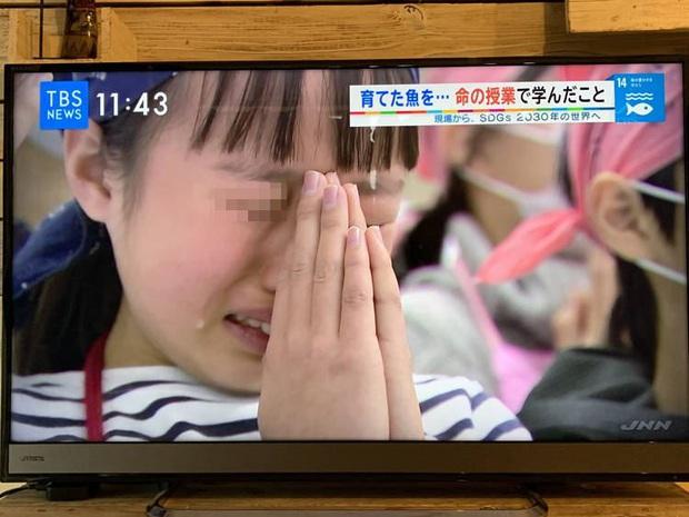 Lớp học ở Nhật gây phẫn nộ vì bắt học sinh giết mổ và ăn thịt con vật do chính tay mình nuôi - Ảnh 1.