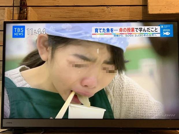 Lớp học ở Nhật gây phẫn nộ vì bắt học sinh giết mổ và ăn thịt con vật do chính tay mình nuôi - Ảnh 3.