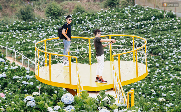 Du khách đổ xô về vườn hoa cẩm tú cầu đẹp nhất Đà Lạt để chụp ảnh dịp nghỉ lễ 30/4 - 1/5 - Ảnh 13.