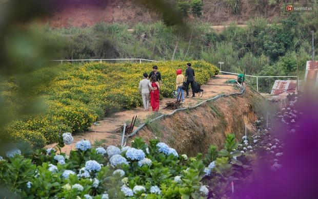 Du khách đổ xô về vườn hoa cẩm tú cầu đẹp nhất Đà Lạt để chụp ảnh dịp nghỉ lễ 30/4 - 1/5 - Ảnh 7.