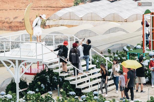 Du khách đổ xô về vườn hoa cẩm tú cầu đẹp nhất Đà Lạt để chụp ảnh dịp nghỉ lễ 30/4 - 1/5 - Ảnh 10.