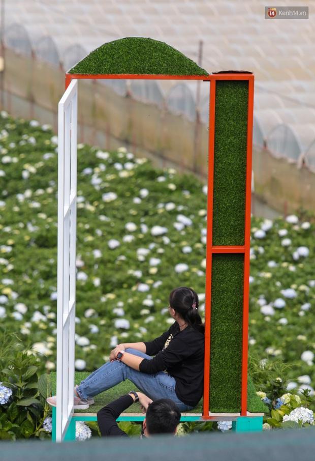 Du khách đổ xô về vườn hoa cẩm tú cầu đẹp nhất Đà Lạt để chụp ảnh dịp nghỉ lễ 30/4 - 1/5 - Ảnh 11.