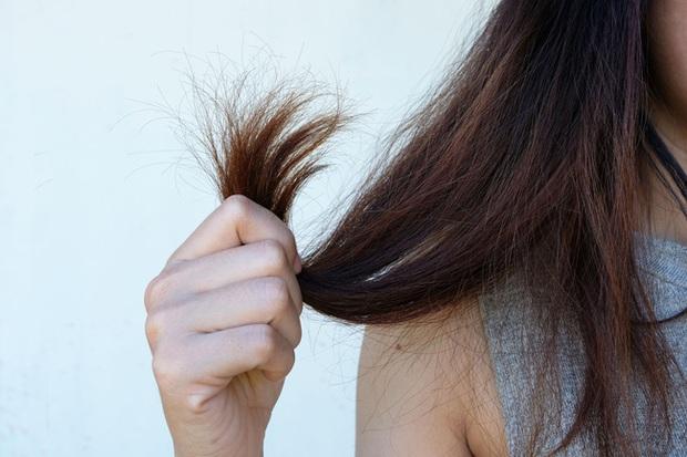 Chuyên gia cảnh báo: Bạn cứ làm 4 điều này với mái tóc trước khi đi ngủ thì giấc mơ tóc đẹp bồng bềnh mãi xa vời - Ảnh 2.