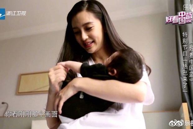 Những bà mẹ cực phẩm showbiz: Mợ chảnh xuất sắc, Trương Bá Chi khiến Cnet cảm phục, mỹ nhân cuối gây sốt vì gia đình hoàn mỹ - Ảnh 13.