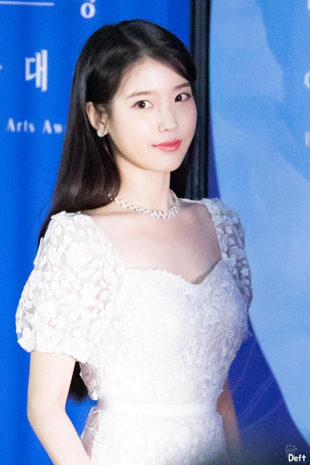 Viễn cảnh thảm đỏ Baeksang 2020 bùng nổ vì 5 mỹ nhân đề cử giải khủng: Combo Kim Hee Ae, IU, Son Ye Jin đúng là tuyệt phẩm - Ảnh 19.
