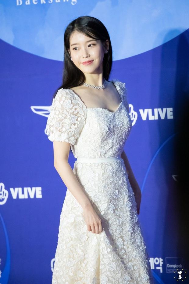 Viễn cảnh thảm đỏ Baeksang 2020 bùng nổ vì 5 mỹ nhân đề cử giải khủng: Combo Kim Hee Ae, IU, Son Ye Jin đúng là tuyệt phẩm - Ảnh 20.